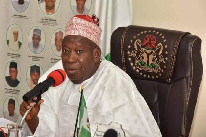 Nigeria: Kano governor, Ganduje Orders Probe Into Claims Gorilla Swallowed U.S.$18,900 2