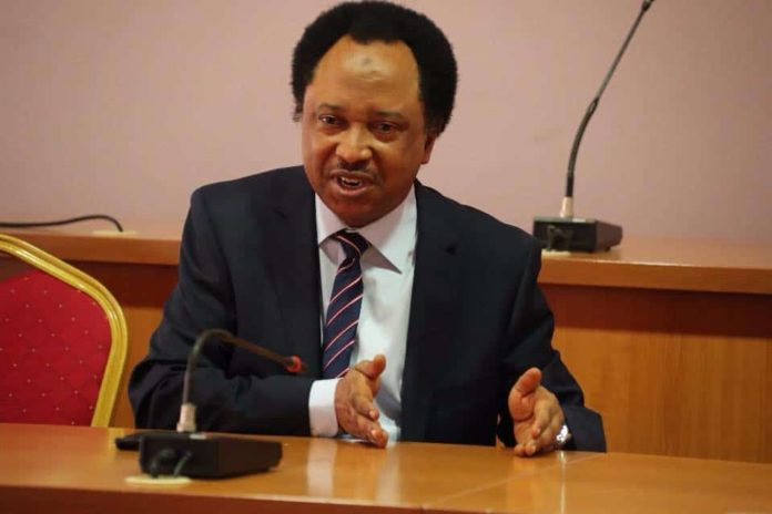 Nigeria: Former Senator Shehu Sani Arrested For Alleged Extortion 2