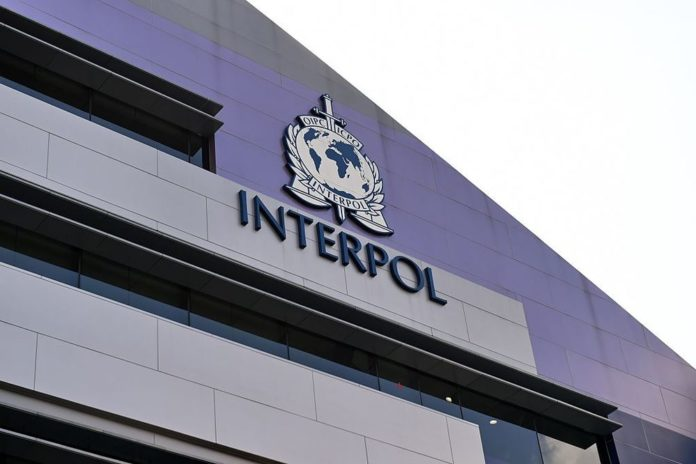 Interpol breaks international COVID-19 fraud scheme 2