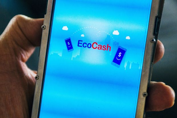 Zimbabwe Central Bank charges Ecocash CEO, Cassava Smartech CEO with money laundering
